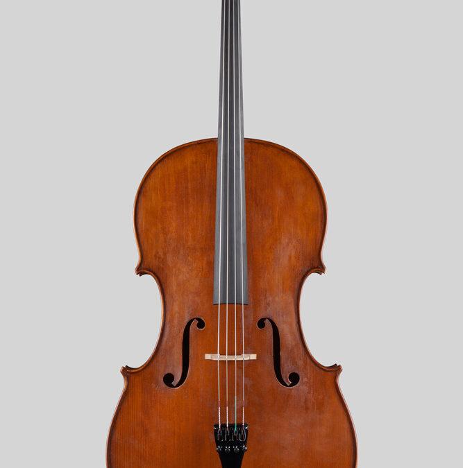Goffriller Cello Bird